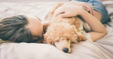 ¿Cuáles son las consecuencias de dormir con nuestras mascotas?